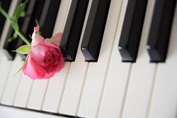 ピアノ 楽器の練習 英語 英会話 会社 強制